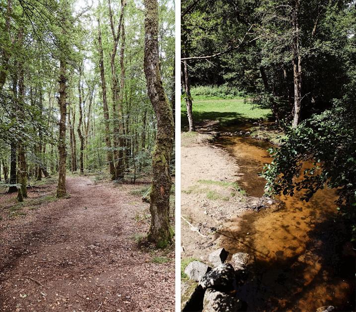 Parc naturel regional du Morvan_Saut de Gouloux_3