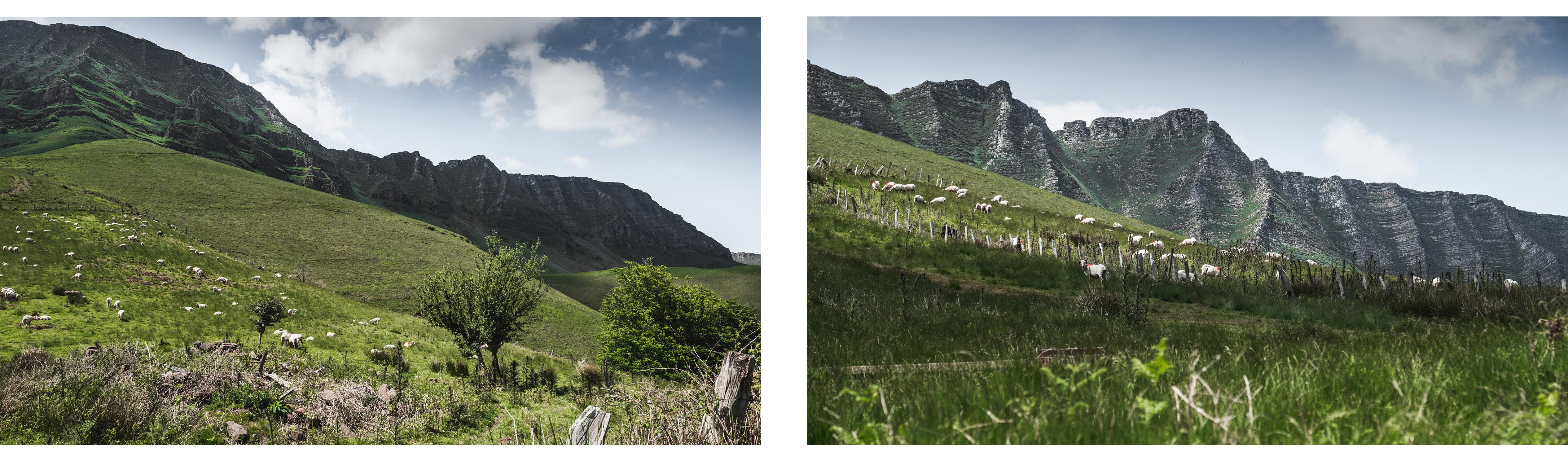 Randonnée au Pays Basque - Les crêtes d'Iparla-paysage